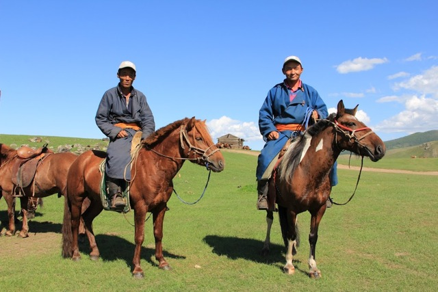 ... pictures mongolian horse race mongolian horse riding mongolian horse: http://www.horsebreedspictures.com/mongolian-horse.asp